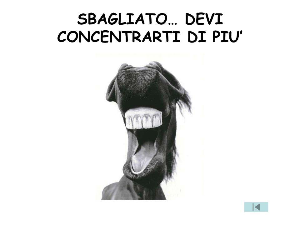 SBAGLIATO… DEVI CONCENTRARTI DI PIU'