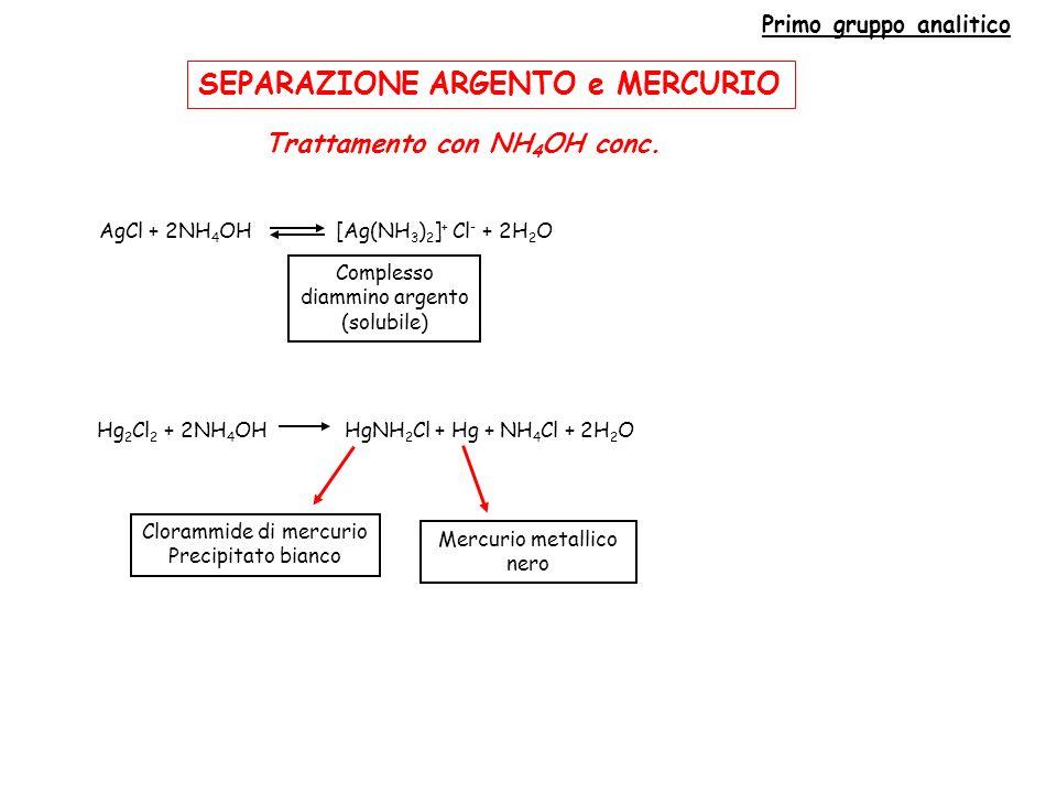 Primo gruppo analitico Trattamento con NH4OH conc.