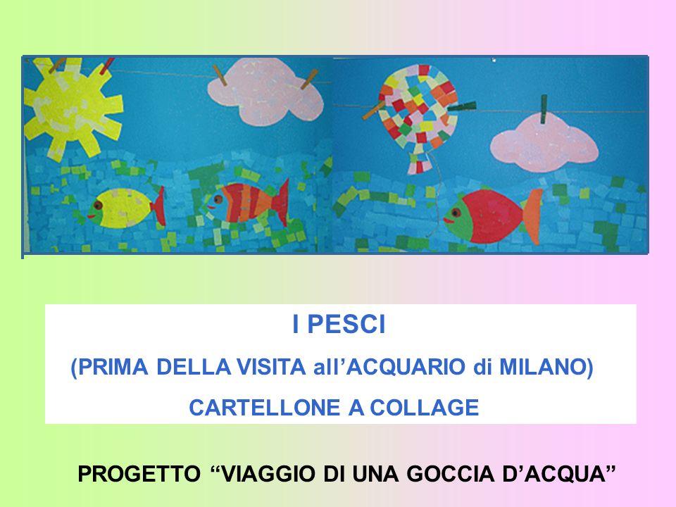 I PESCI (PRIMA DELLA VISITA all'ACQUARIO di MILANO)