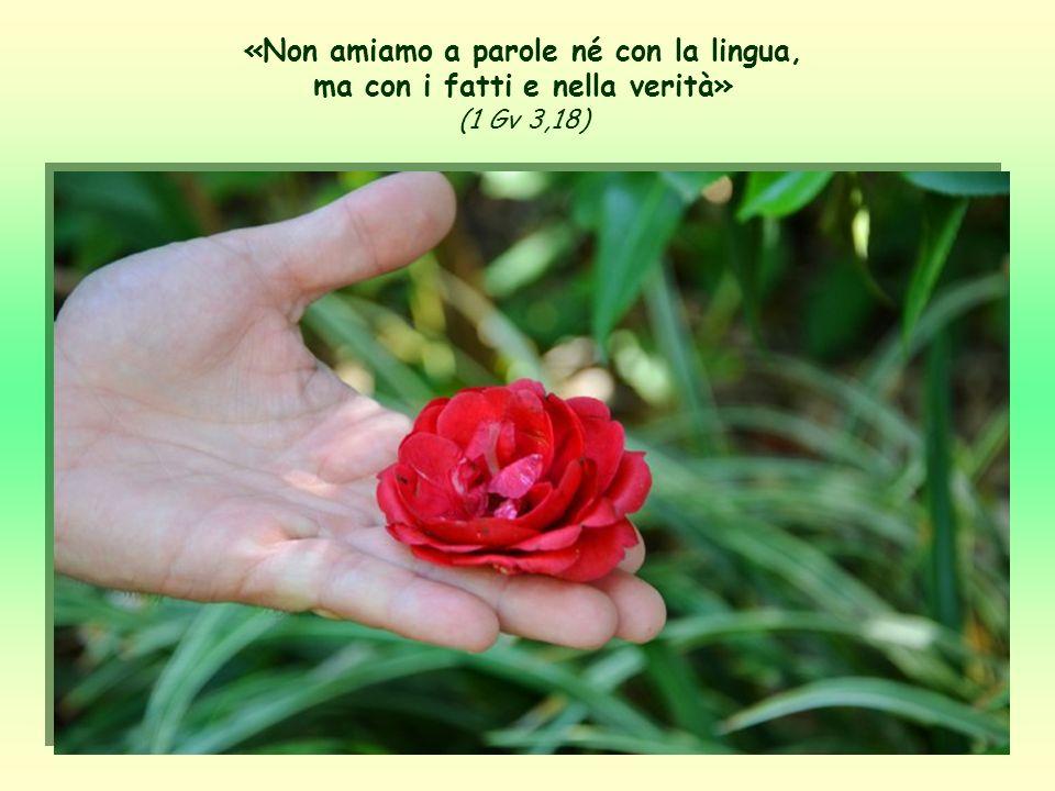 «Non amiamo a parole né con la lingua, ma con i fatti e nella verità» (1 Gv 3,18)