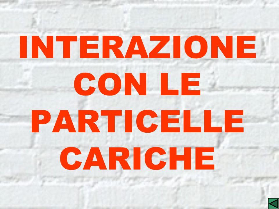 INTERAZIONE CON LE PARTICELLE CARICHE