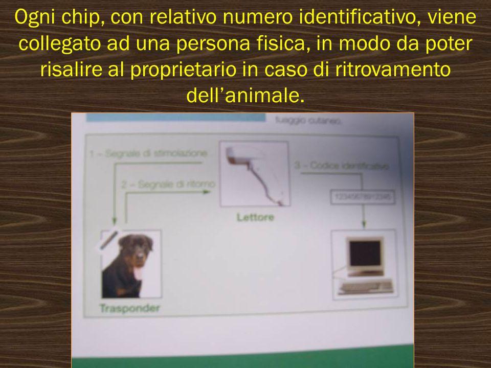 Ogni chip, con relativo numero identificativo, viene collegato ad una persona fisica, in modo da poter risalire al proprietario in caso di ritrovamento dell'animale.