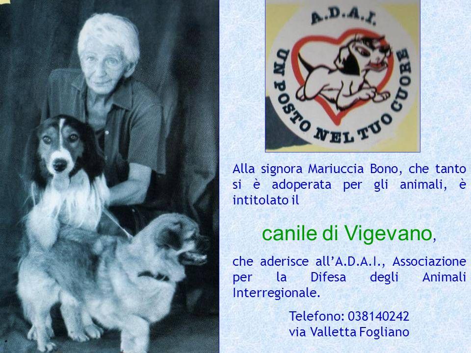 Alla signora Mariuccia Bono, che tanto si è adoperata per gli animali, è intitolato il