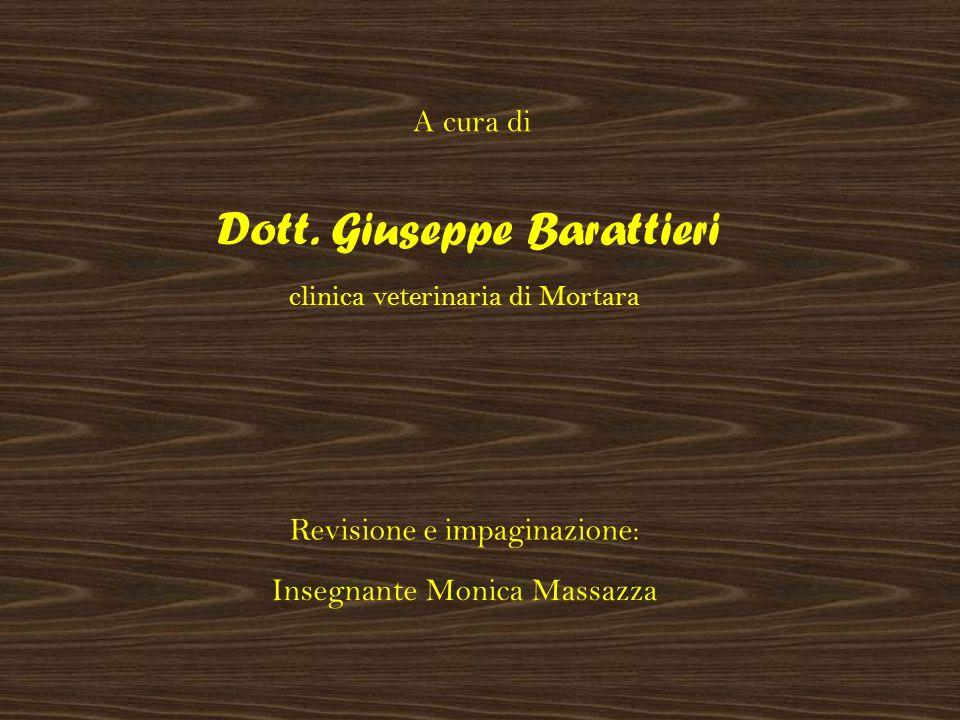Dott. Giuseppe Barattieri