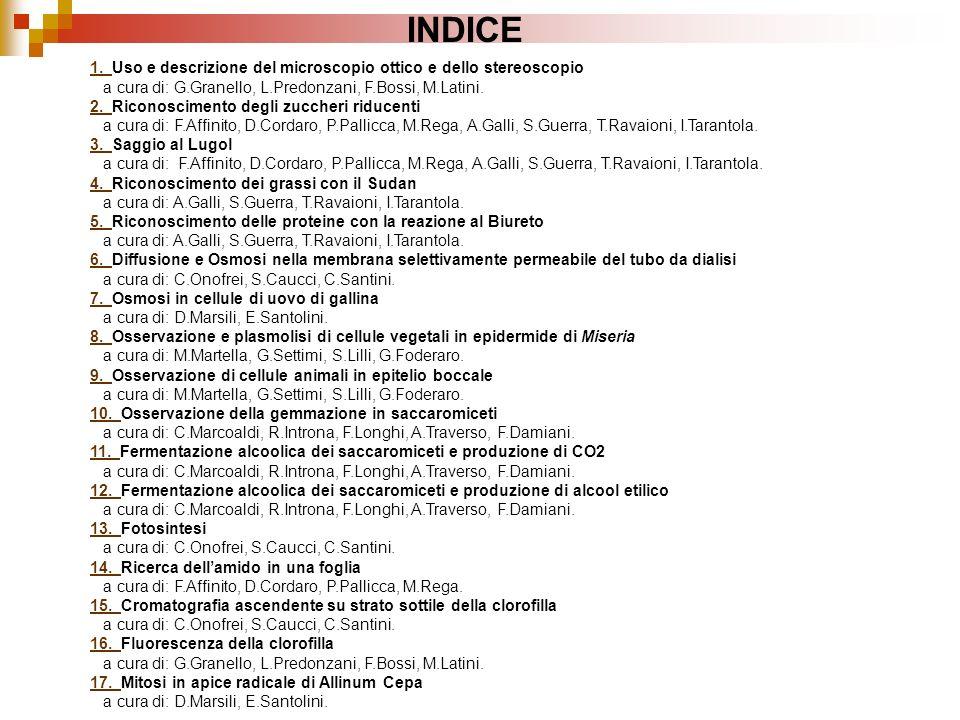 INDICE 1. Uso e descrizione del microscopio ottico e dello stereoscopio. a cura di: G.Granello, L.Predonzani, F.Bossi, M.Latini.