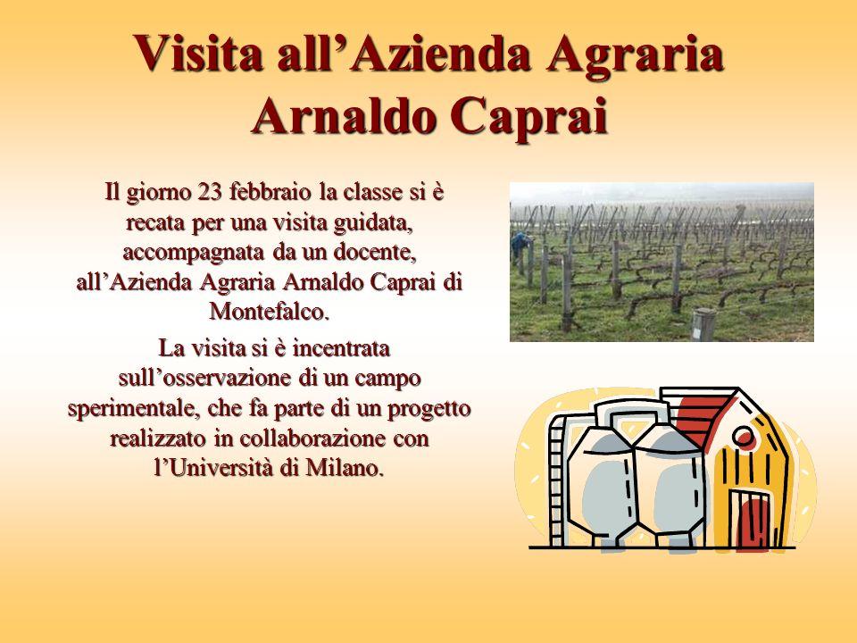 Visita all'Azienda Agraria Arnaldo Caprai