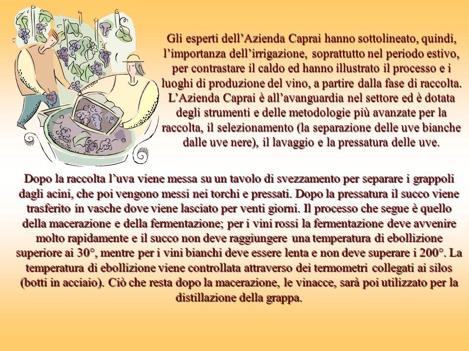 Gli esperti dell'Azienda Caprai hanno sottolineato, quindi, l'importanza dell'irrigazione, soprattutto nel periodo estivo, per contrastare il caldo ed hanno illustrato il processo e i luoghi di produzione del vino, a partire dalla fase di raccolta.