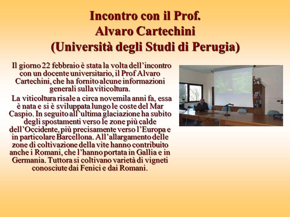 Incontro con il Prof. Alvaro Cartechini (Università degli Studi di Perugia)
