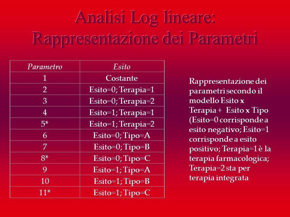 Analisi Log lineare: Rappresentazione dei Parametri