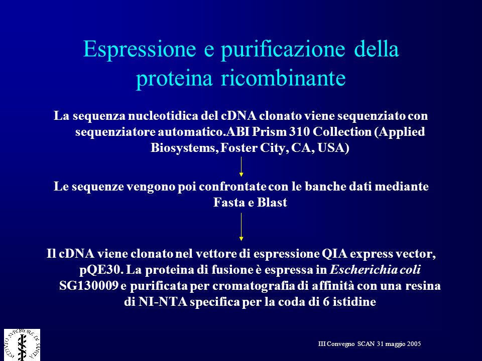 Espressione e purificazione della proteina ricombinante