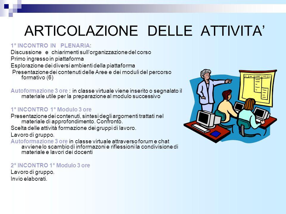 ARTICOLAZIONE DELLE ATTIVITA'