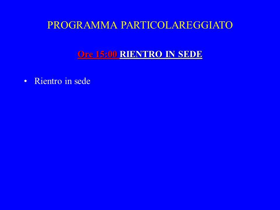 PROGRAMMA PARTICOLAREGGIATO