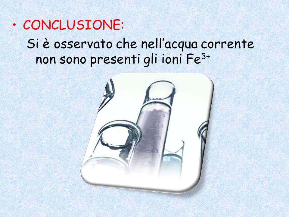 CONCLUSIONE: Si è osservato che nell'acqua corrente non sono presenti gli ioni Fe3+