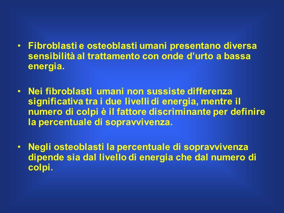 Fibroblasti e osteoblasti umani presentano diversa sensibilità al trattamento con onde d'urto a bassa energia.