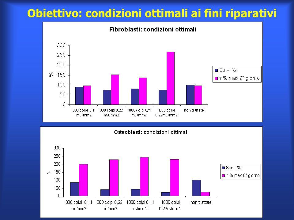 Obiettivo: condizioni ottimali ai fini riparativi
