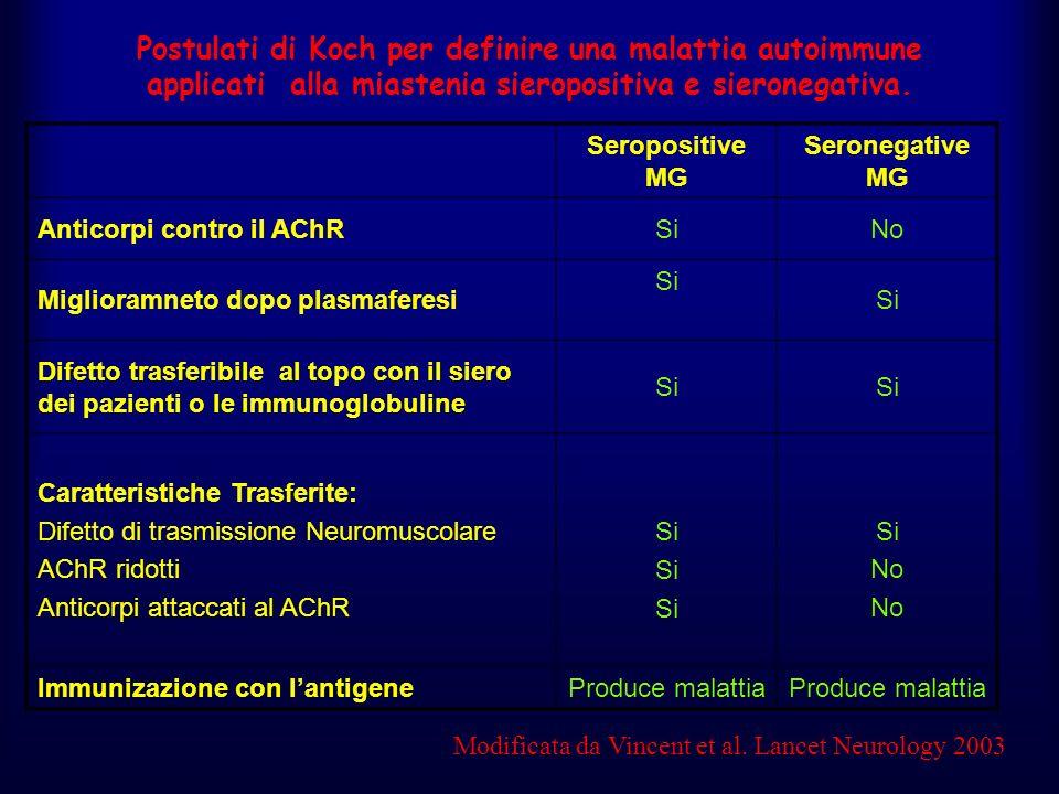 Modificata da Vincent et al. Lancet Neurology 2003