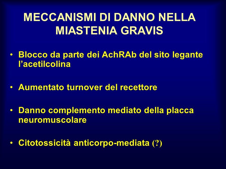 MECCANISMI DI DANNO NELLA MIASTENIA GRAVIS