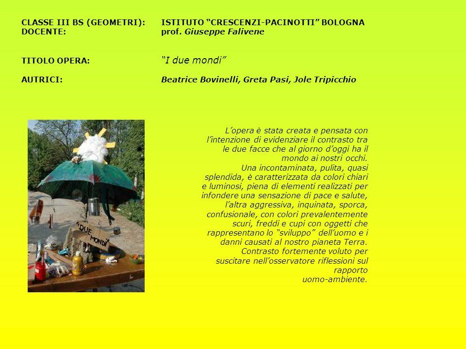 CLASSE III BS (GEOMETRI): ISTITUTO CRESCENZI-PACINOTTI BOLOGNA