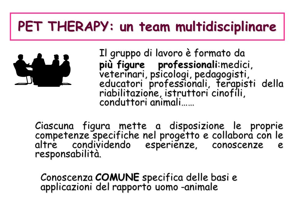 PET THERAPY: un team multidisciplinare
