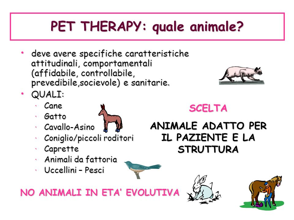PET THERAPY: quale animale