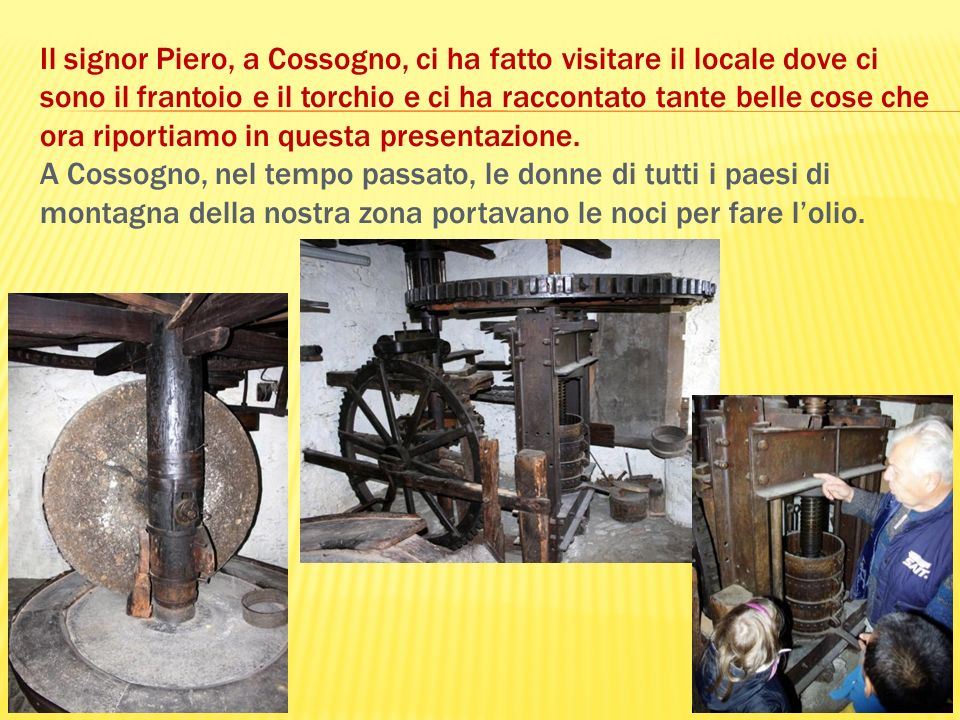 Il signor Piero, a Cossogno, ci ha fatto visitare il locale dove ci sono il frantoio e il torchio e ci ha raccontato tante belle cose che ora riportiamo in questa presentazione.