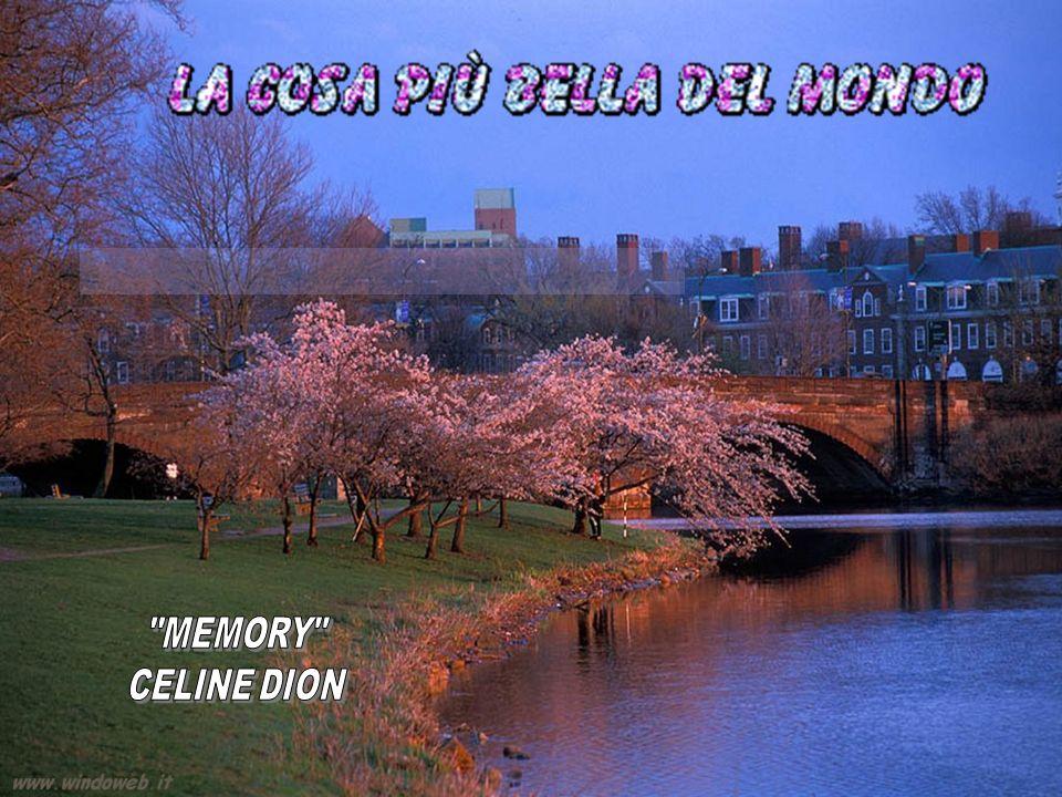 MEMORY CELINE DION