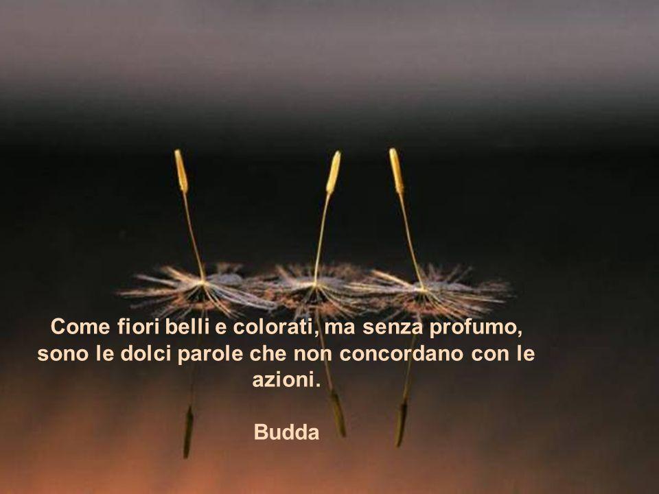 Come fiori belli e colorati, ma senza profumo, sono le dolci parole che non concordano con le azioni.