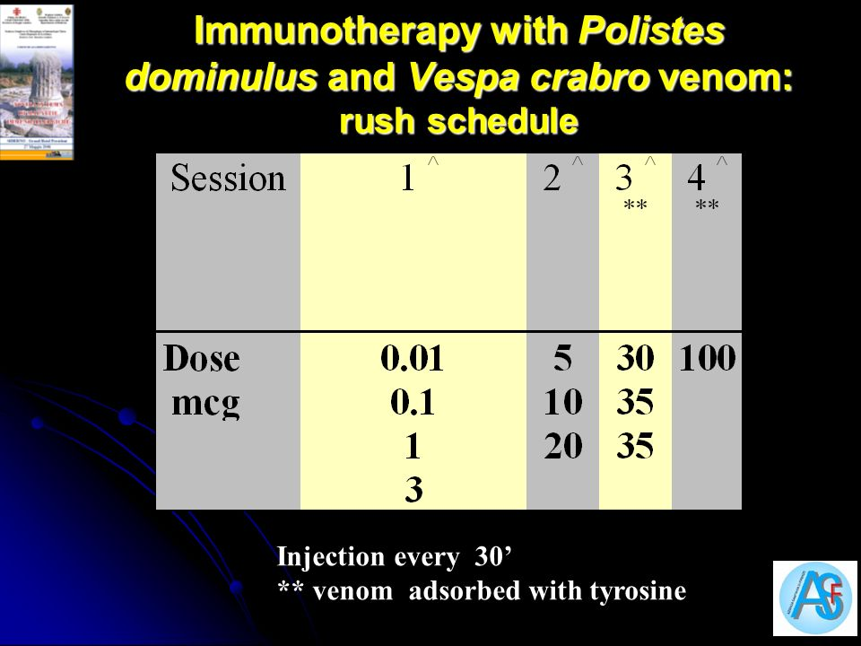 Immunotherapy with Polistes dominulus and Vespa crabro venom: rush schedule