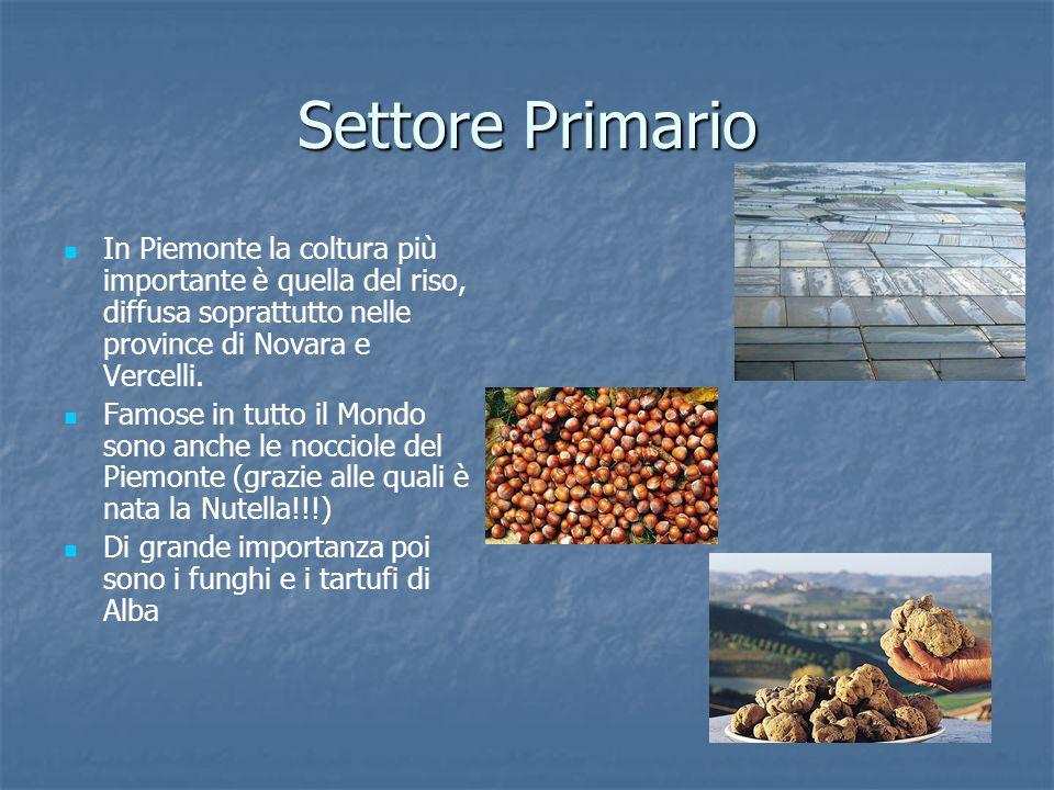 Settore Primario In Piemonte la coltura più importante è quella del riso, diffusa soprattutto nelle province di Novara e Vercelli.