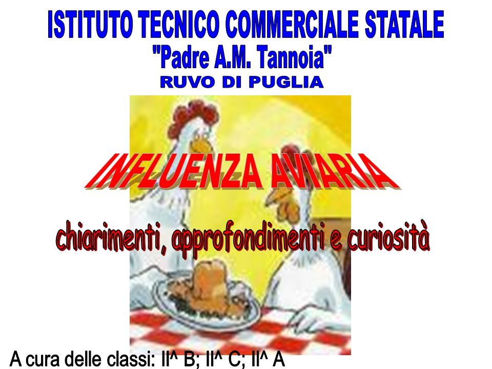 ISTITUTO TECNICO COMMERCIALE STATALE Padre A.M. Tannoia