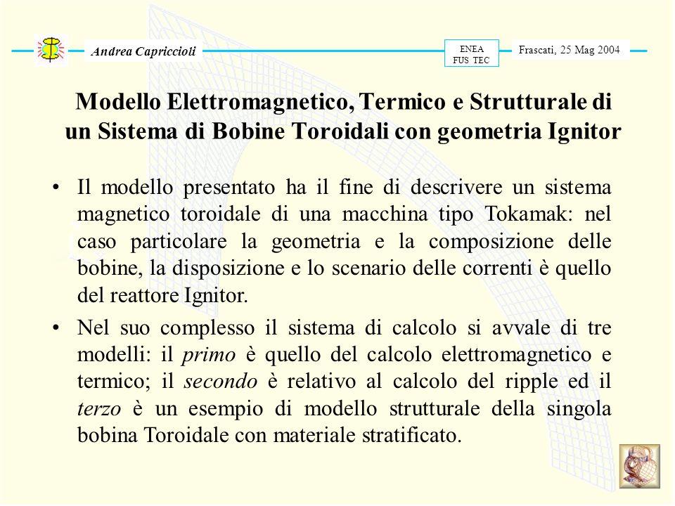 Andrea Capriccioli ENEA. FUS TEC. Frascati, 25 Mag 2004.