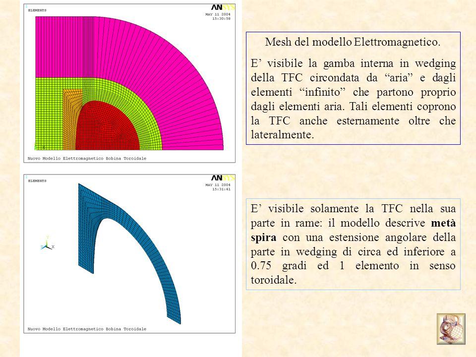 Mesh del modello Elettromagnetico.