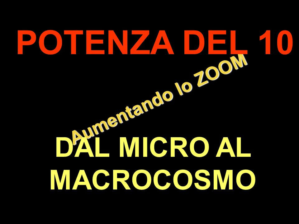DAL MICRO AL MACROCOSMO