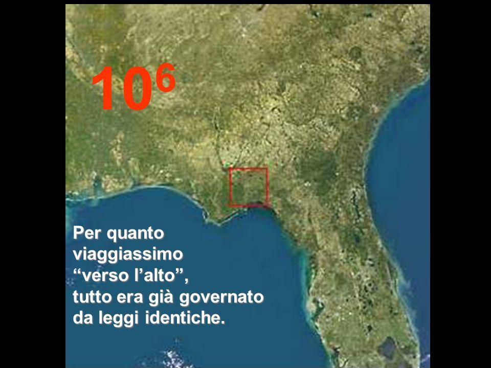 106 Per quanto viaggiassimo verso l'alto , tutto era già governato da leggi identiche.