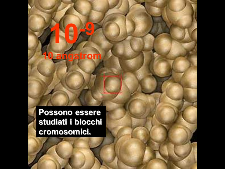 10-9 10 angstrom Possono essere studiati i blocchi cromosomici.