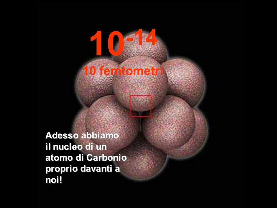 10-14 10 femtometri Adesso abbiamo il nucleo di un atomo di Carbonio proprio davanti a noi!