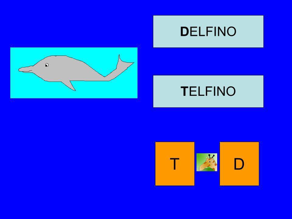 DELFINO TELFINO T D