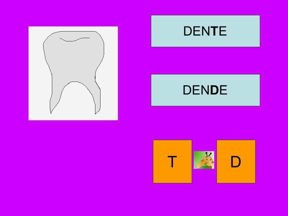 DENTE DENDE T D