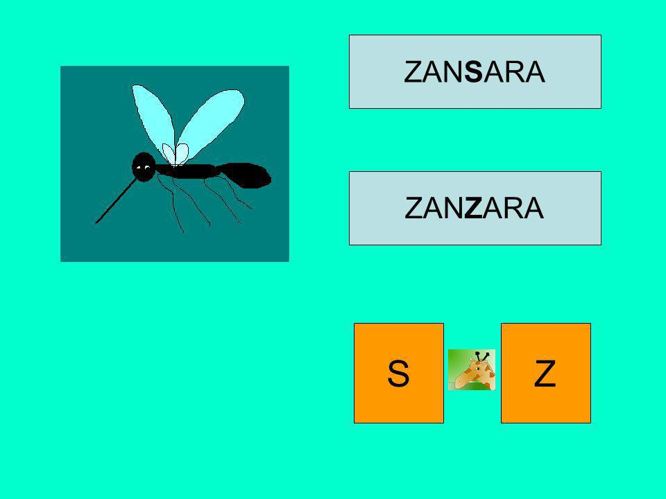 ZANSARA ZANZARA S Z
