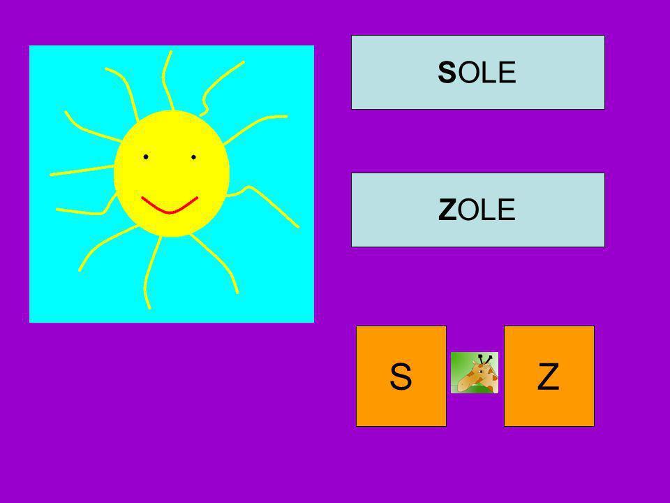 SOLE ZOLE S Z