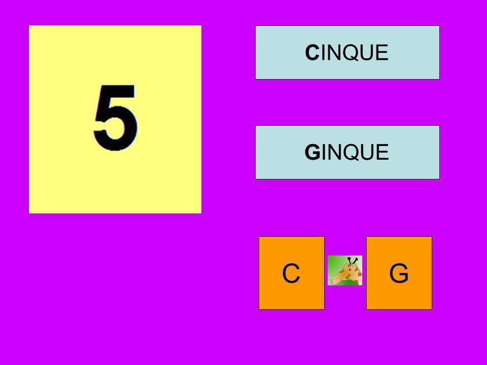 CINQUE GINQUE C G