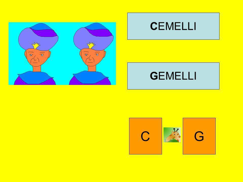 CEMELLI GEMELLI C G