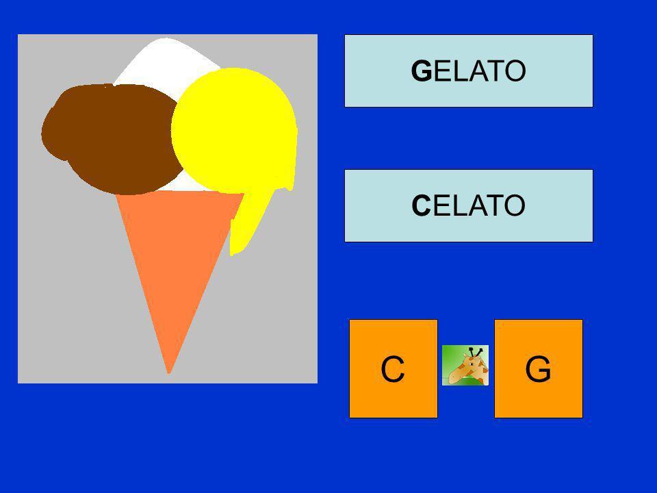 GELATO CELATO C G