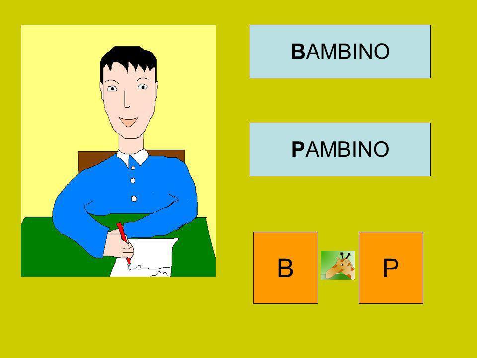 BAMBINO PAMBINO B P