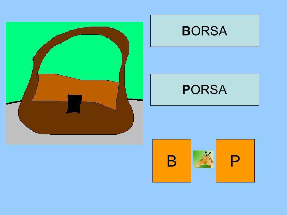 BORSA PORSA B P
