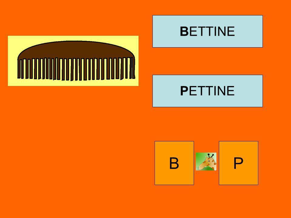 BETTINE PETTINE B P