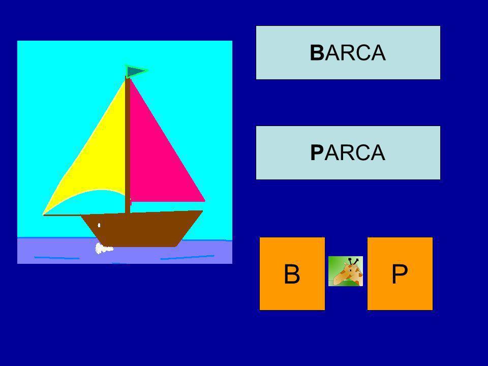 BARCA PARCA B P