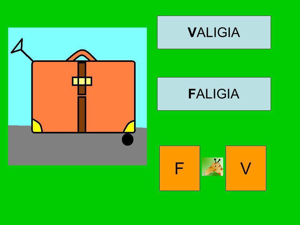 VALIGIA FALIGIA F V