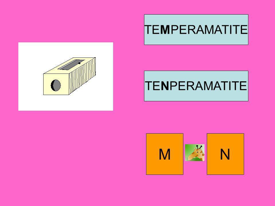 TEMPERAMATITE TENPERAMATITE M N