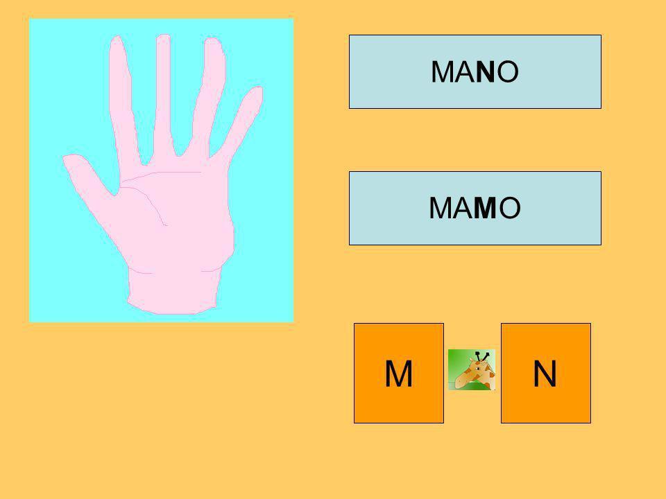 MANO MAMO M N